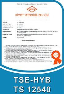 TSE-HYB TS 12540