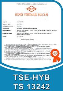 TSE-HYB TS 13242